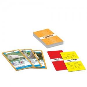 Κάρτες Υπερατου Γάτες (100723)